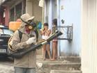 AM terá reforço de 6,3 mil agentes para combate ao Aedes aegypti