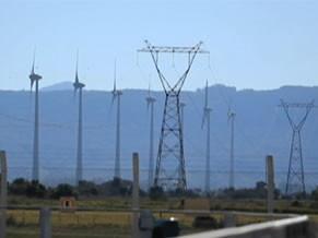 Cabos e torres espalhados pelo país compõe as redes de trasmissão  (Foto: Divulgação)