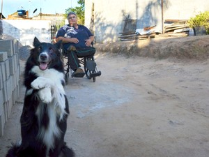 Cão Jack, de dois anos, ajuda dono nas tarefas do dia a dia (Foto: Camilla Motta/G1)