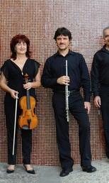 Camerata Quarteto Novo