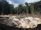 Febre do ouro acelera desmatamento na América do Sul, afirma estudo