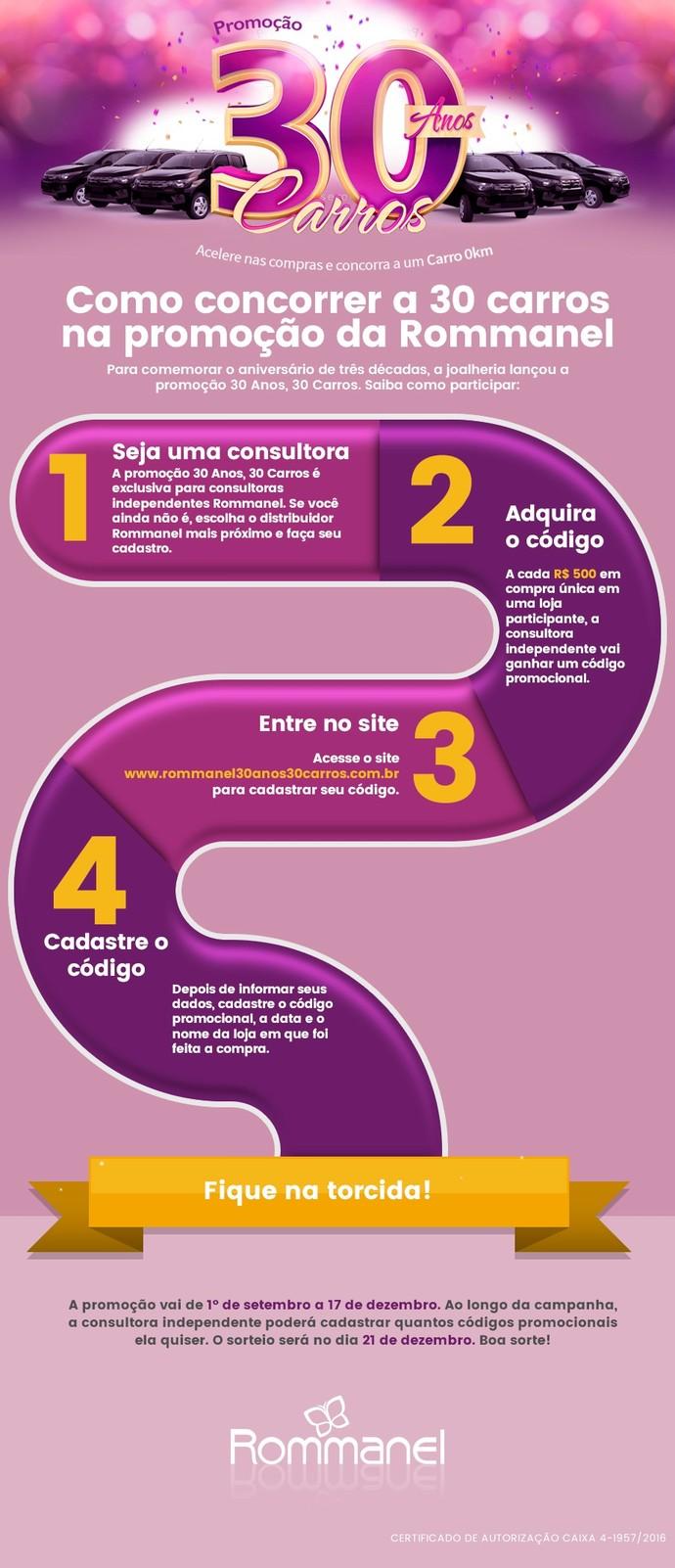 rommanel_infografico_carros (Foto: Divulgação)