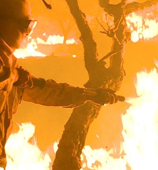 incêndios (TV Globo)