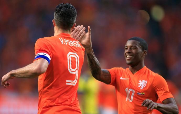 Van Persie comemora gol da Holanda contra o Equador (Foto: Agência AP )