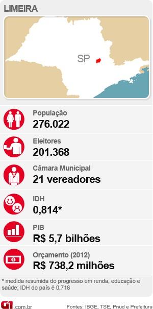 Veja o raio-x com as estatísticas de Limeira para as eleições deste ano (Foto: Arte / G1)
