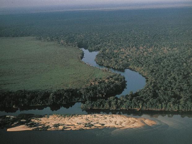 Vista aérea da floresta Amazônia na região dos arredores do rio Guaporé (Foto: André Edouard/Arquivo/AFP)