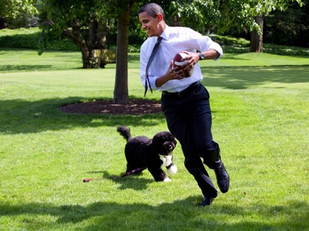 Bo brinca com o presidente dos EUA, Barack Obama, no gramado da Casa Branca em foto de 12 de maio de 2009 (Foto: White House/Pete Souza)