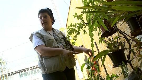 Casos de dengue caem em Boituva, aponta Vigilância Epidemiológica