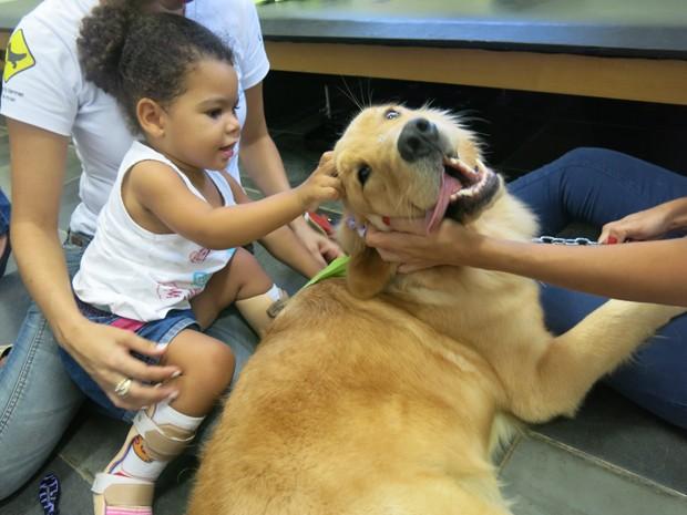 Garota se diverte com cão voluntário  (Foto: Anna Gabriela Ribeiro / G1 Santos)