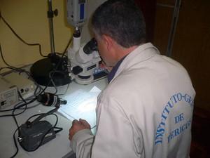 Peritos realizam análises no caso da morte de Odilaine Uglione (Foto: Divulgação/IGP)