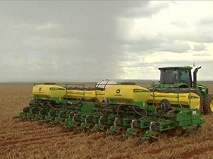 plantio de algodão (Foto: Reprodução/Globo Rural)