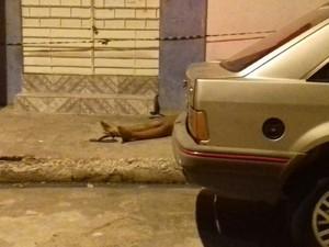 Adolescente foi morta com um tiro na nuca no bairro da Jatiúca. (Foto: Shade Andréa/G1)