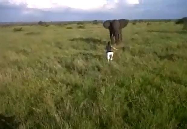 Guia se arriscou ao correr em direção de elefante selvagem (Foto: Reprodução/YouTube/MansRaider)