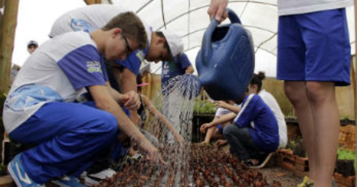 Projeto Florir distribui mudas de plantas medicinais em Toledo - Globo.com
