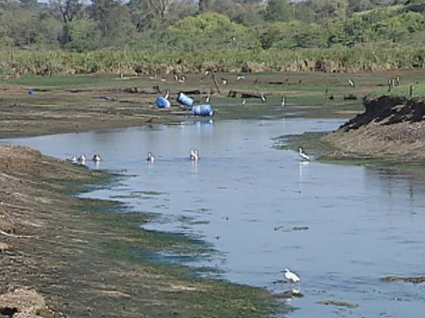 Represa de captação do Rio Batalha atinge nível mais baixo nos últimos 8 anos (Foto: Reprodução/TV TEM)