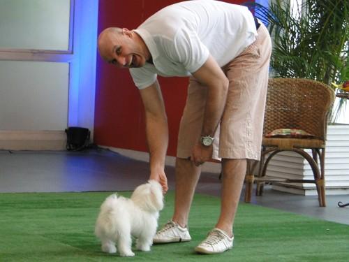 Veja a diferença de tamanho entre os dois! (Foto: Domingão do Faustão / TV Globo)