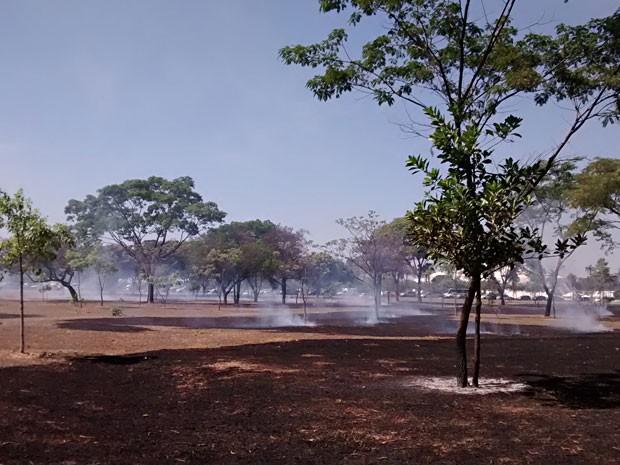 Incêndio consumiu gramado perto do Centro de Convenções Ulysses Guimarães, em Brasília (Foto: Lucas Nanini/G1)