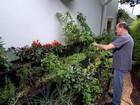 Mini-horta aumenta faturamento de fábrica para móveis de escritório