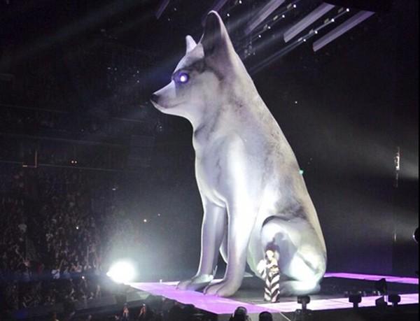 Miley Cyrus com réplica do cachorro Floyd no palco em show em abril de 2014 (Foto: Reprodução / Tumblr)