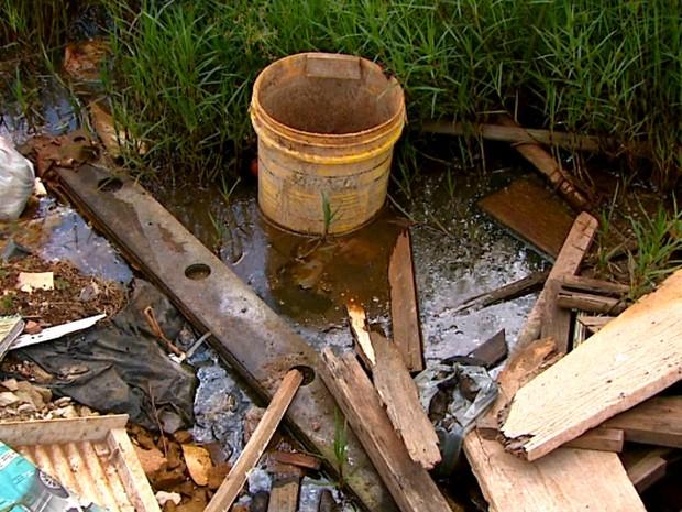 Materiais como baldes, telhas e madeiras são jogados em terrenos públicos (Foto: Rodrigo Sargaço/EPTV)