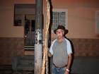 Comerciante colhe mandioca 'gigante' em sítio de Lagoinha (SP)