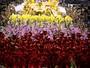 VÍDEO: reveja o desfile vencedor da Mangueira (Fabio Tito/G1)