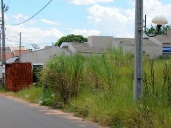 Fiscais da prefeitura vão multa imediatamente donos de terrenos sujos (Foto: Divulgação/Prefeitura de Umuarama)
