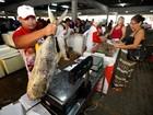 Preço do pescado recua nos mercados municipais de Belém