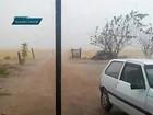 Chuva de granizo atinge plantações de morango em regiões do DF