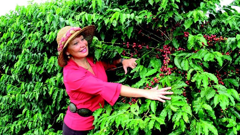 empreender-sebrae-junho-fazenda-Monte-Alto (Foto: Arquivo/fazenda Monte Alto)