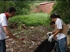 Em Gurupi, agentes fazem faxina em lotes para combater o Aedes aegypti