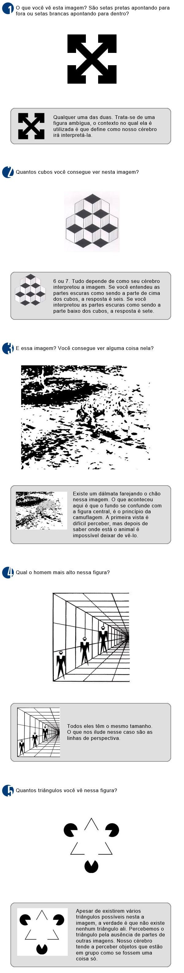 Testes ilusões  (Foto: Rede Globo)