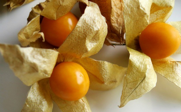 Superalimentos para o vero: golden berry (Foto: Reproduo / Getty Images)