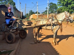Carroceiro Fernando Pereira, de 34 anos, trabalha na Vila Madureira, em Ceil�ndia. (Foto: J�ssica Nascimento/G1)