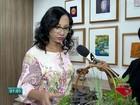 Plantas podem ser aliadas contra o  Aedes aegypti, diz médica do ES