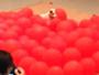Cão estoura 100 balões de gás em tempo recorde nos EUA