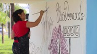 Artista plástica revitaliza paradas de ônibus do Cruzeiro