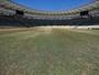 Só impressão: grama do Maracanã já pode receber jogos, diz empresa