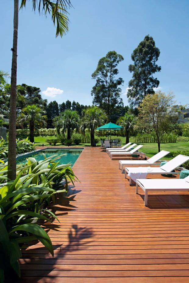 Piscina. No fundo, palmeiras-butiá com cicas na base. Ao lado, maciços de orquídeas-bambu (Foto: Marco Antonio / Divulgação)