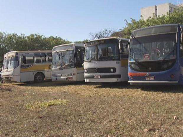 Ônibus piratas notificados pelo DFTrans na manhã desta terça-feira (21) (Foto: TV Globo/ Reprodução)