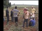 Fazendas flagradas em situação irregular devem pagar indenização