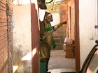 Com 108 casos de dengue neste ano, Leme, SP, está em estado de alerta