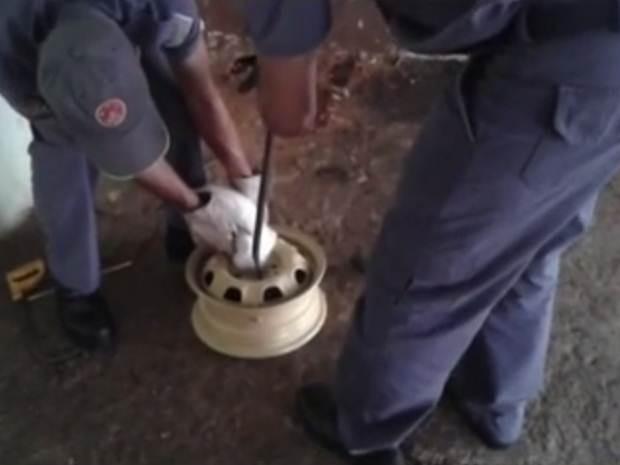 Bombeiros tentam retirar cabeça do gato da roda (Foto: Reprodução/TV TEM)