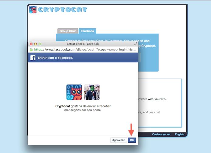 Permitindo que o CryptoCat possa enviar mensagens do Facebook (Foto: Reprodução/Marvin Costa)