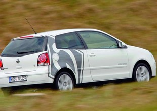 VW Polo estilizado pelo Werder Bremen (Foto: Divulgação)