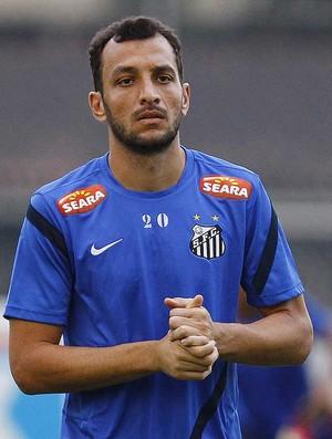 Edu Dracena (Foto: Ricardo Saibun / Divulgação Santos FC)