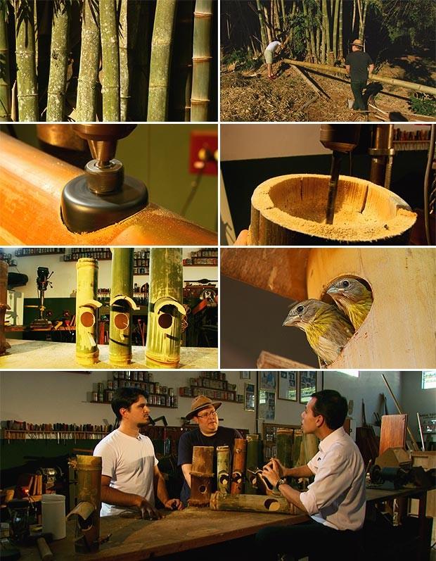 Ninhos construídos por primos salvam as aves em Ribeirão Bonito (Foto: Rodrigo Sargaço/TG)