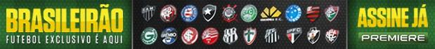 Banner Premiere FC Brasileirão 2013 (Foto: Divulgação)