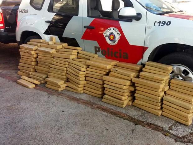 Foram apreendidos 295,2 quilos de maconha (Foto: Polícia Militar/Cedida)