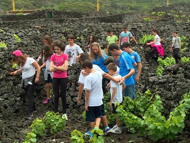 Intercâmbio Viajando nas asas do Conhecimento promoveu o encontro de alunos brasileiros e portugueses. (Foto: Globo)